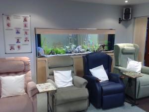 Aquarium Services from Seefish   Seefish Ltd.