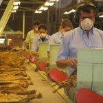 Trabajadores de la industria del tabaco en Colombia.