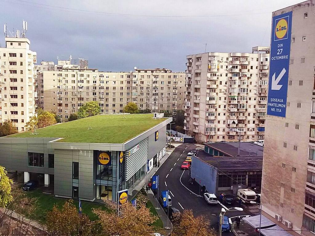 Lidl is leading the way   Sempergreen Green roof Lidl Constanta