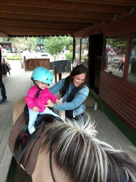 pony-jylland-zoo