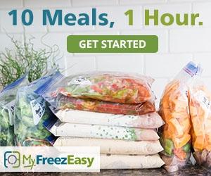 10-meals-in-1-hour-with-my-freezeasy_zpsybaixa9s