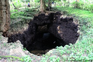 Davao Part 6: Samal Island's  Amazing Monfort Bat Cave