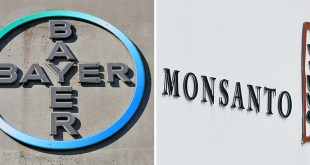bayer-monsanto-fusione