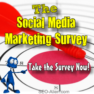Social Media Marketing Survey from Social Media Marketers