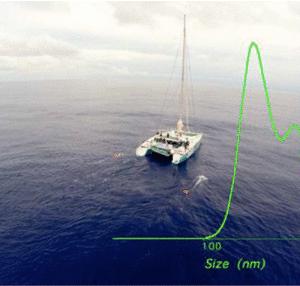 Les Scientifiques De L'expédition 7E Continent Prouvent La Présence De Nanoparticules De Plastique Dans L'océan.