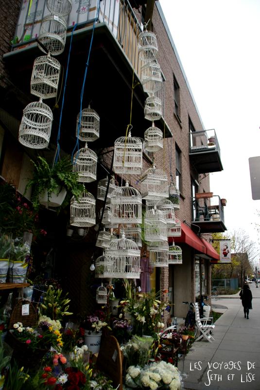 blog voyage canada pvt montreal mile end insolite fleuriste cage boutique