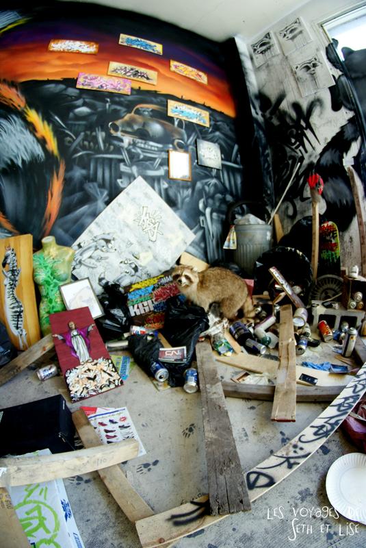 blog pvt canada montreal voyage espace frais peint exposition poubelle street art raton laveut empaille tableau