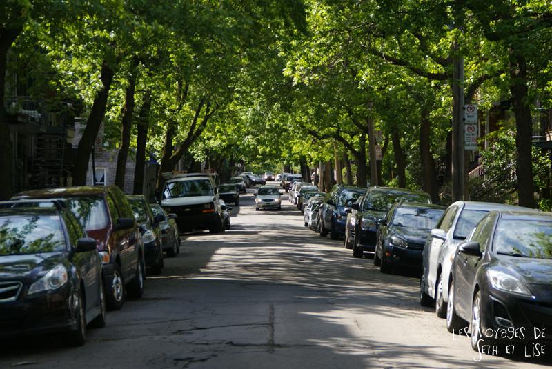 blog pvt canada montreal tour du monde voyage couple rue ombre