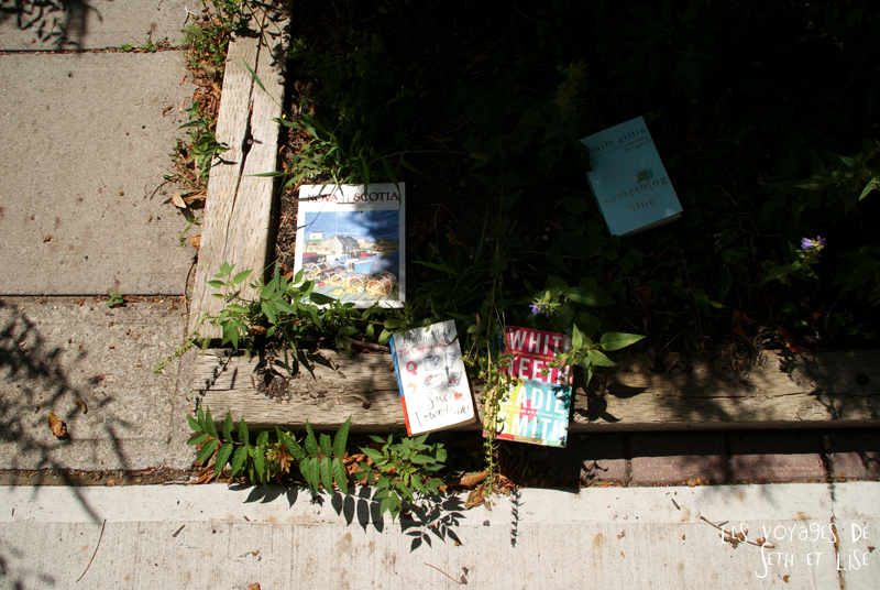 blog pvt canada whv toronto ontartio couple voyage travel tour du monde livre gratuit free books
