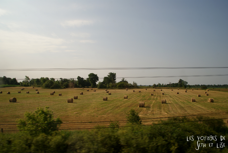 blog pvt canada toronto couple whv voyage photos tour du monde rail train champ rural paysage
