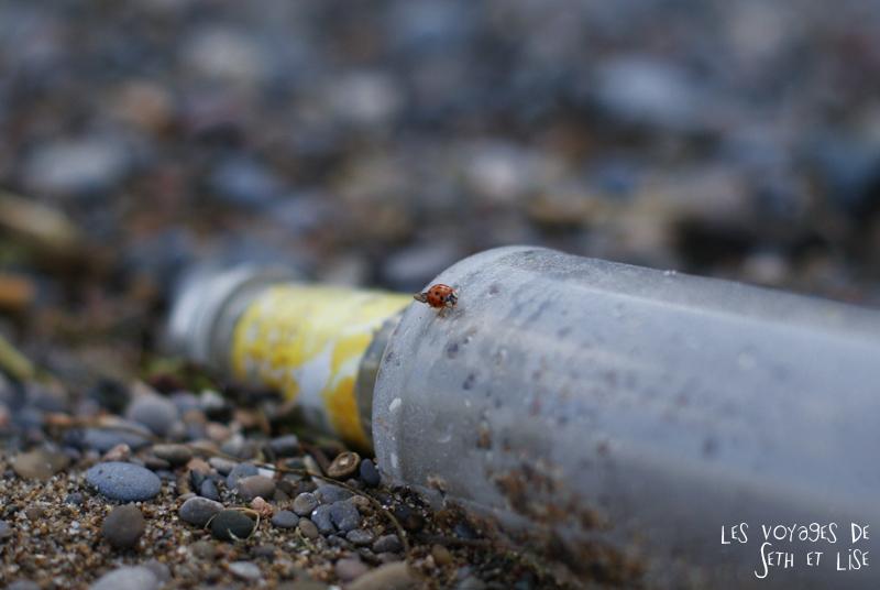 pvt canada toronto couple blog iles island ferry voyage tour du monde coccinelle ladybird bouteille bottle