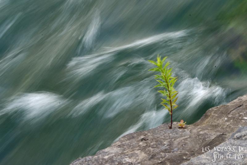 niagara falls chutes ontario canada pvt blog tourisme cascade nature couple vegetation fleur