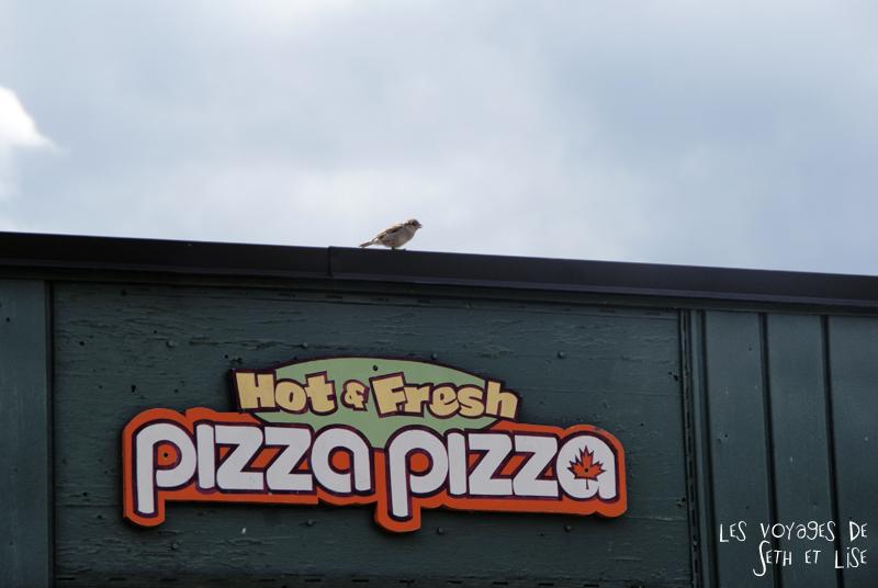 pvt canada toronto couple blog iles island ferry voyage tour du monde oiseau pizza restaurant enseigne