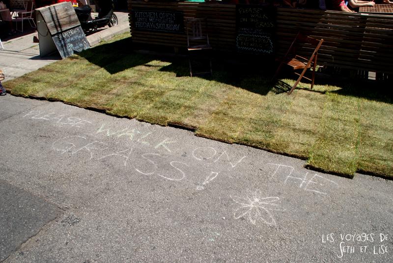 blog voyage canada pvt toronto kensington pedestrian market hippie chill grass herbe hemp walk vegetation