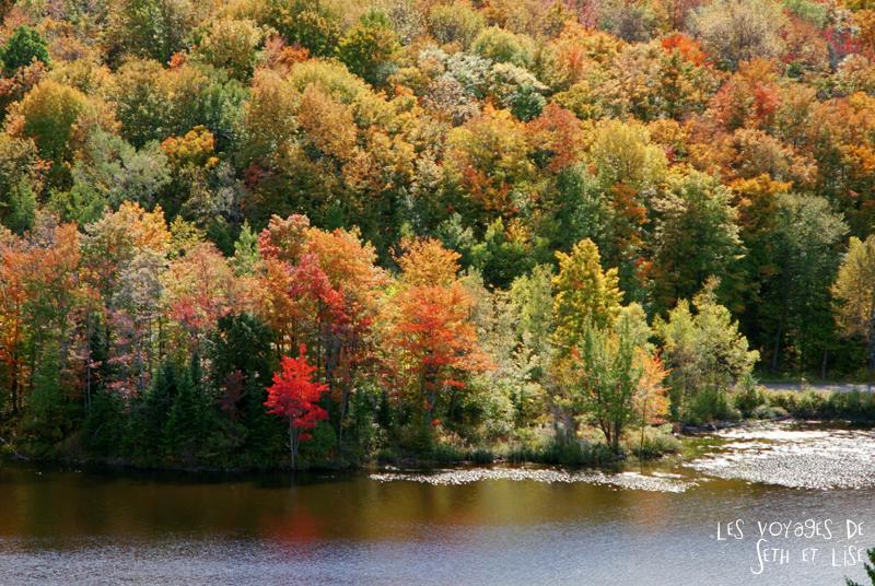 blog pvt canada pvtiste quebec mont orford parc photgraphie voyage couple ete indien summer indian couleur colors nature tour du monde route arbre