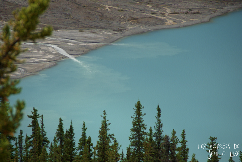 blog pvt photographie pvtiste canada alberta rocheuses rockies moutains voyage montagne couple tour du monde nature parc national lac lake peyto