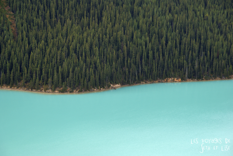 blog pvt photographie pvtiste canada alberta rocheuses rockies moutains voyage montagne couple tour du monde nature parc national lac lake peyto blue
