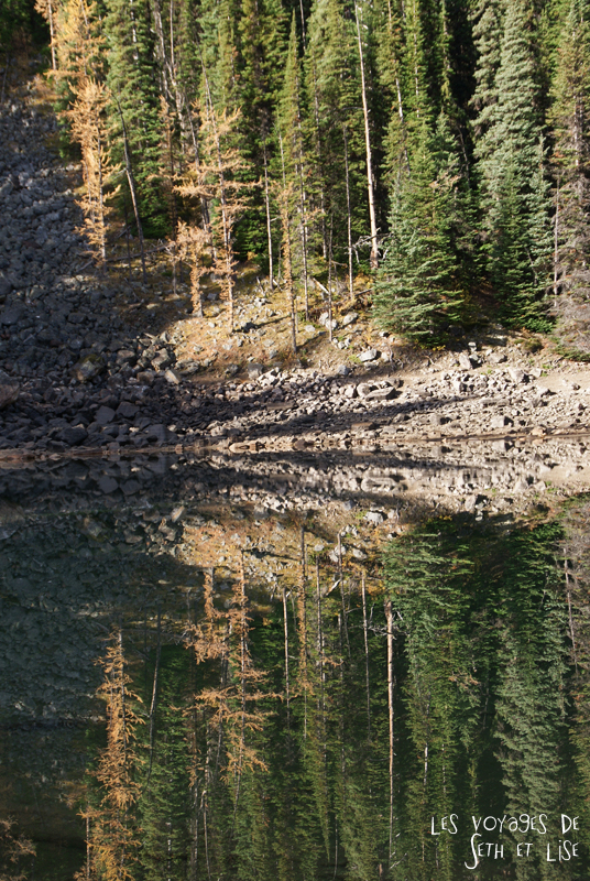 blog pvt photographie pvtiste canada alberta rocheuses rockies moutains voyage montagne couple tour du monde nature parc national lac lake mirror miroir