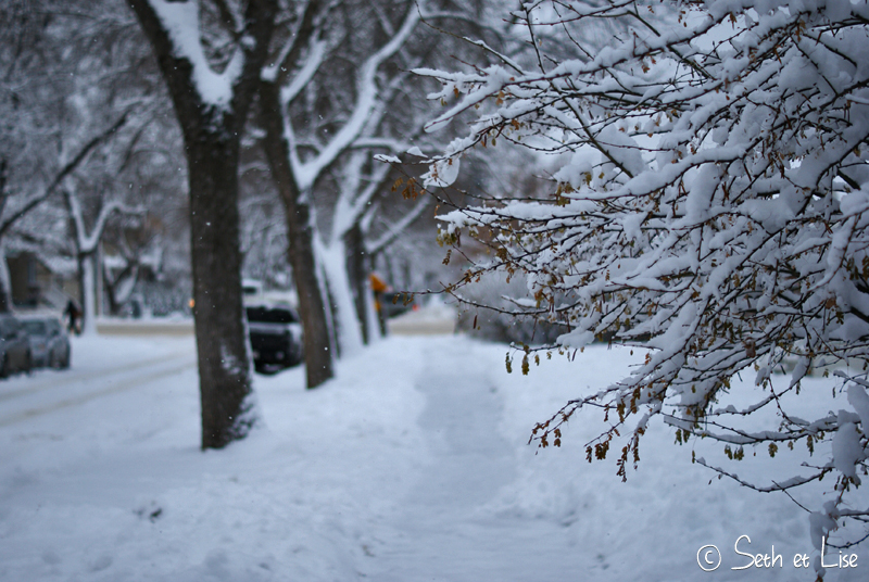 blog canada pvt voyage photo alberta tempete neige hiver