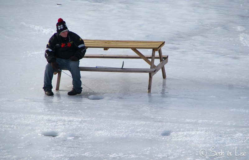 Le froid a l'air d'être plus mordant que les poissons...