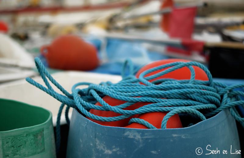 blog voyage canada australie nz nouvelle zelande camargue paca france