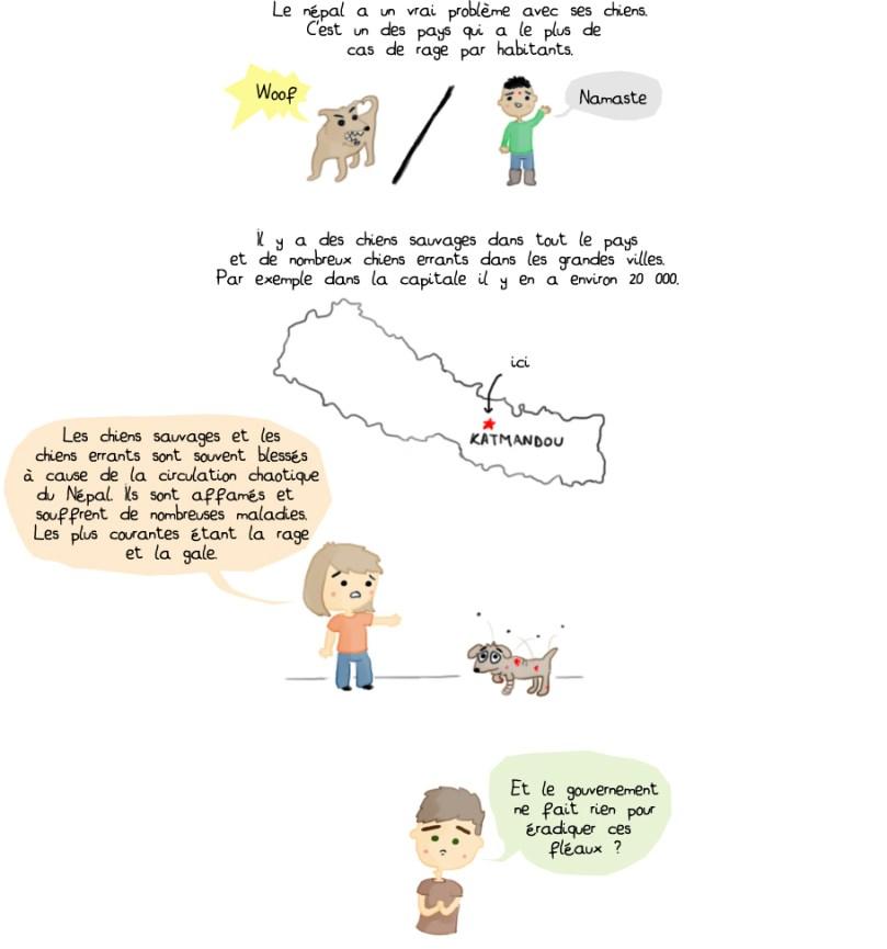 La rage au Népal