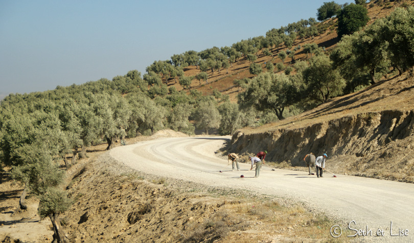 balayeurs maroc volubilis