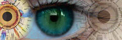 iris si ochi harta iriidologie