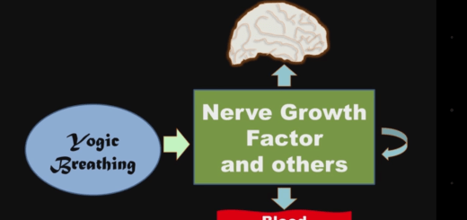 Controlul respirației si factorii de creștere celulara