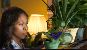 Nicole Beharie debuts as the star of American Violet.