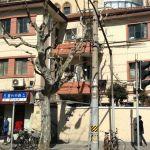 1456 Fuxing Zhong Lu