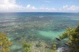 When the weather was calm, we could see the extensive reef just out our doorstep, and sometimes spearfisherman further out.