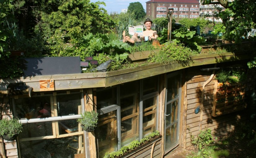 A quick Q & A with #shedoftheyear 2014 winner Joel the Allotment Roof Shed owner