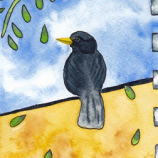Blackbird. 4 x 6 watercolor postcard on 140 lb. cold press paper. © 2013 Sheila Delgado