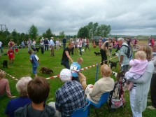 The Dog Show