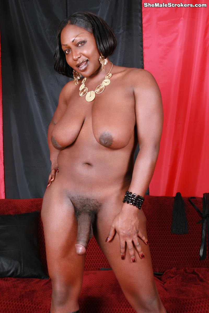 hot black tgirls
