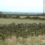 Drystone_walls_near_Birds_Edge_