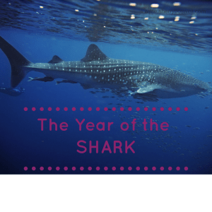 The Year of the Shark