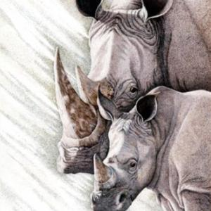 Sherry Steele Artwork - Out of the Dust of Ages | Rhinos