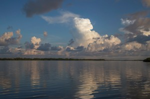Morning on Mullet Key Bayou
