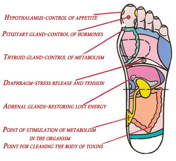 foot-reflexology-these-7-points-can-get-you-back-to-life-in-a-few-minutes