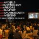 Cinema a la Platja