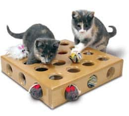 SmartCat Peek-a-Prize Toy Box for Cats - Gifts for Cats
