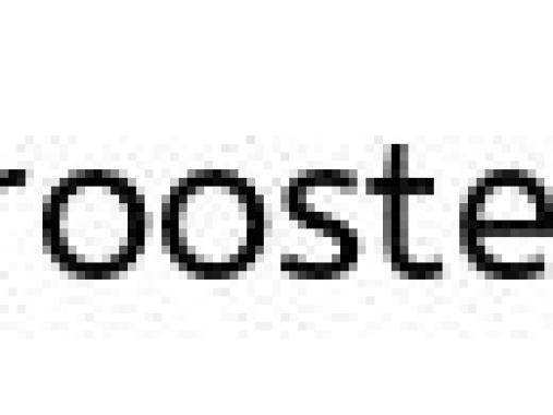 Bookcase #45