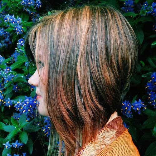 Brunette Short Hairstyle