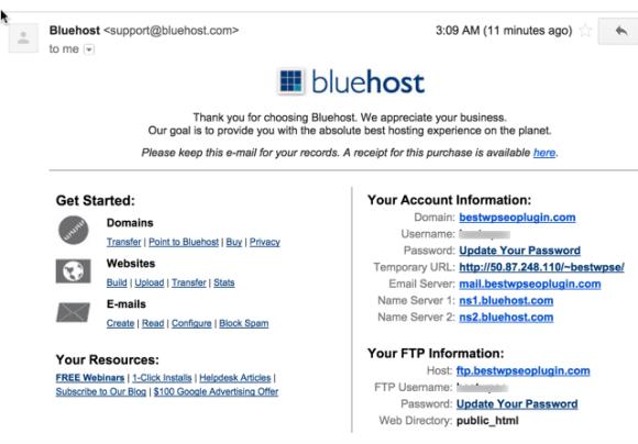 WordPress Webhosting Bought