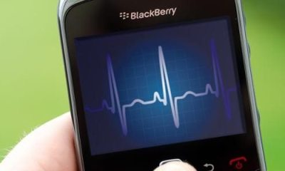 Blackberry crise showmetech