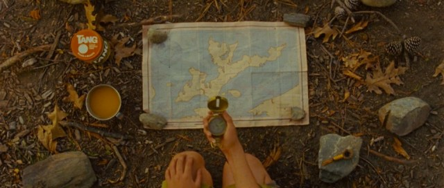 moonrise kingdom flat lay