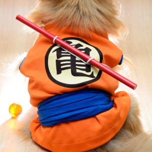 Dog Cosplay Outfits Dragon Ball Z One Piece Shut Up And Take My Yen : Anime & Gaming Merchandise