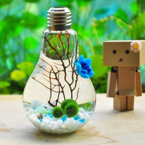 Japanese Light Bulb Aquarium